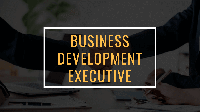 Business Development Executive (Solution)