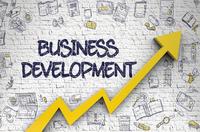 Business Development Manager (Tech Solutions)