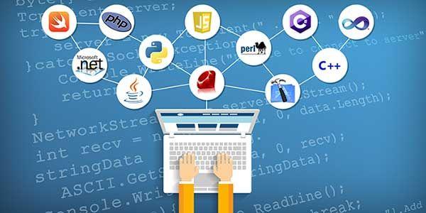 Lập trình web nên học ngôn ngữ nào?