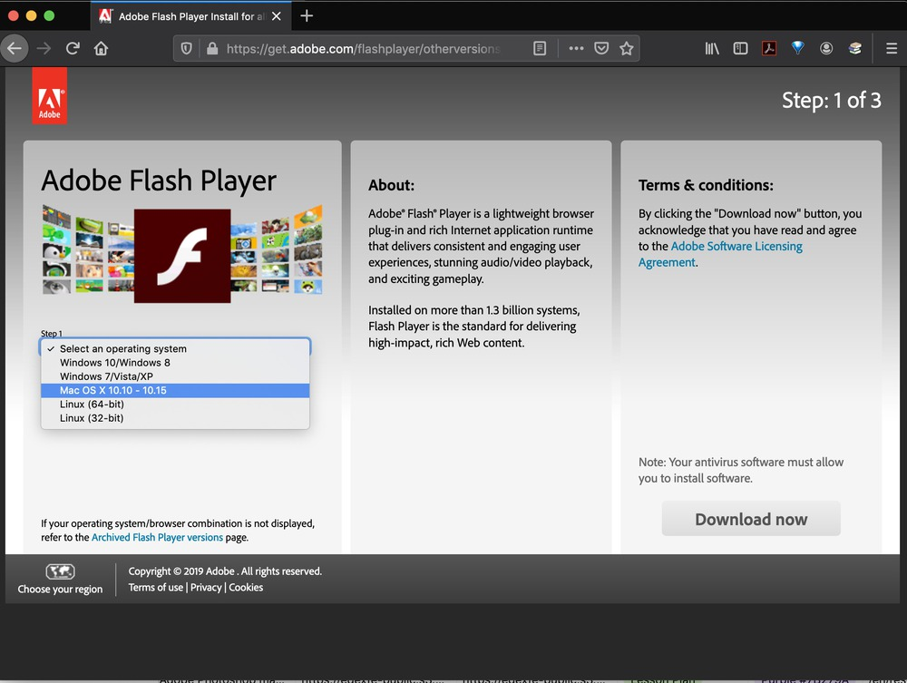 Flash website là gì?