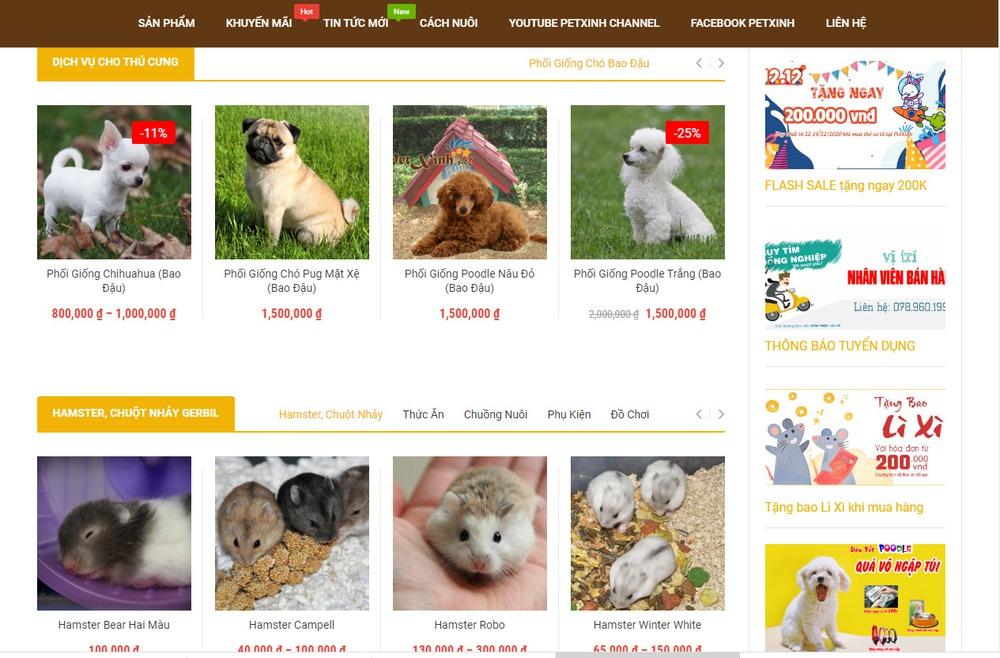 Thiết kế website thú cưng cần lưu ý gì?