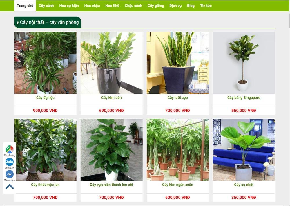 Cửa hàng bán cây cảnh có cần thiết kế website hay không?