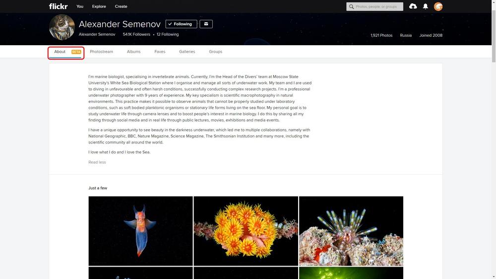 trang web tải ảnh chất lượng cao miễn phí